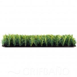 Césped Artificial  LITTLE GRASS 21 mm.
